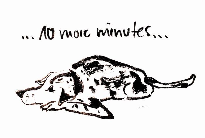 10moreminutes_dog_mck
