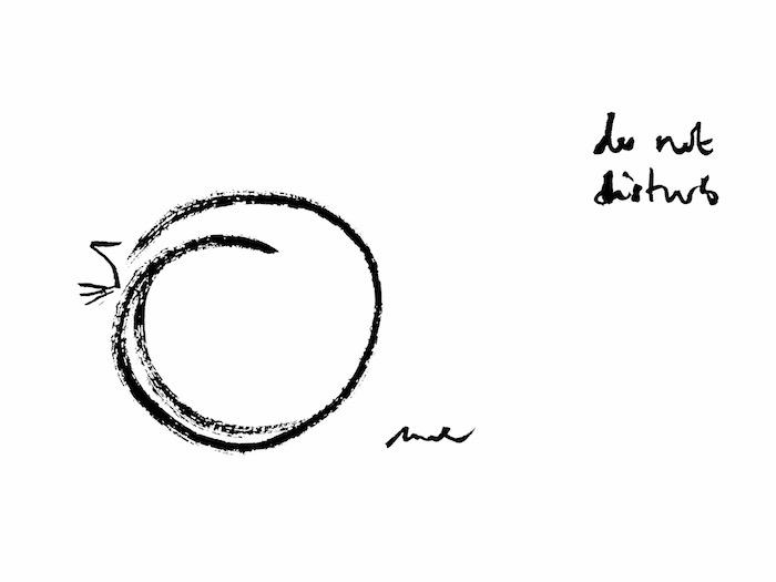 donotdisturb_cat_mck